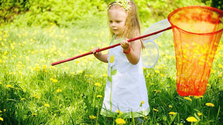 детское образование и педагогика, девочка с сачком