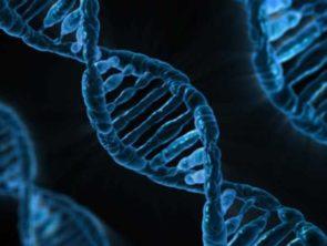Исторические и логические заметки к анализу программ содержательно-генетической логики и СМД-методологии