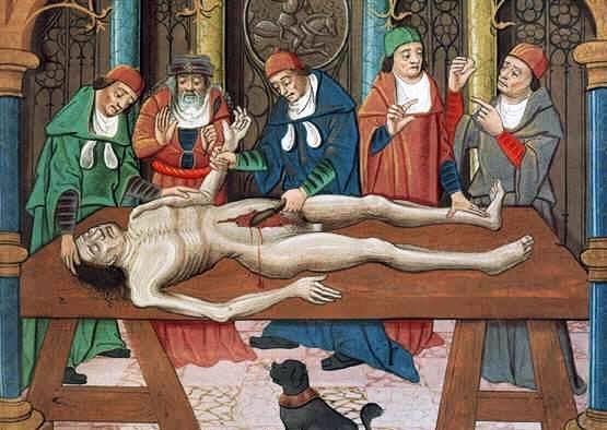 медицинские факультеты средневековья