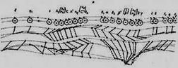 Циклограмма двойного шага в спортивном беге, вид справа, время